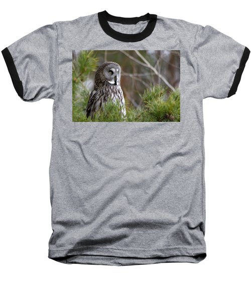 The Great Grey Owl Baseball T-Shirt by Torbjorn Swenelius