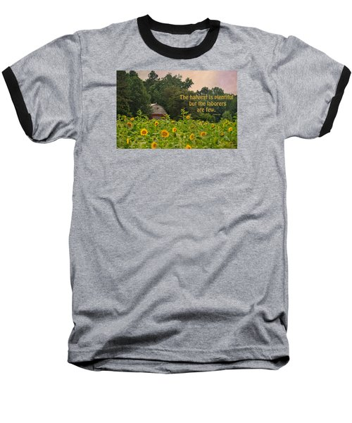 The Harvest Is Plentiful Baseball T-Shirt by Sandi OReilly