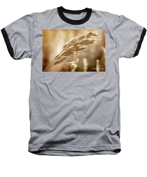 Baseball T-Shirt featuring the photograph The Hot Gold Hush Of Noon by Linda Lees