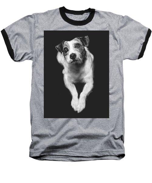 The Jack Russell Stare- Got Ball? Baseball T-Shirt