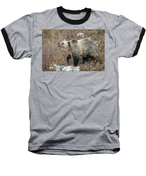 Baseball T-Shirt featuring the photograph The Last Berry by Jack Bell