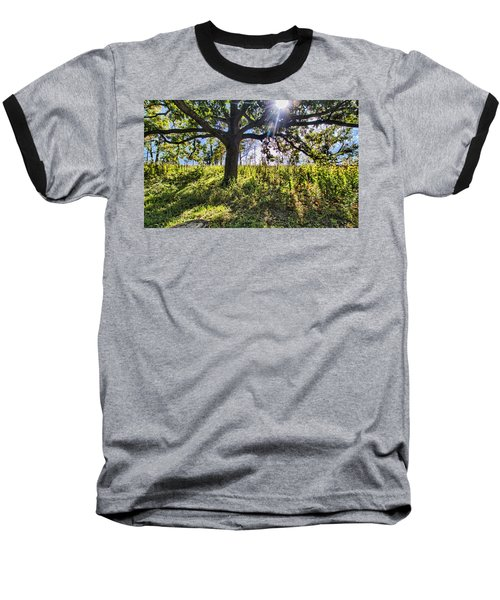 The Learning Tree Baseball T-Shirt by Daniel Sheldon