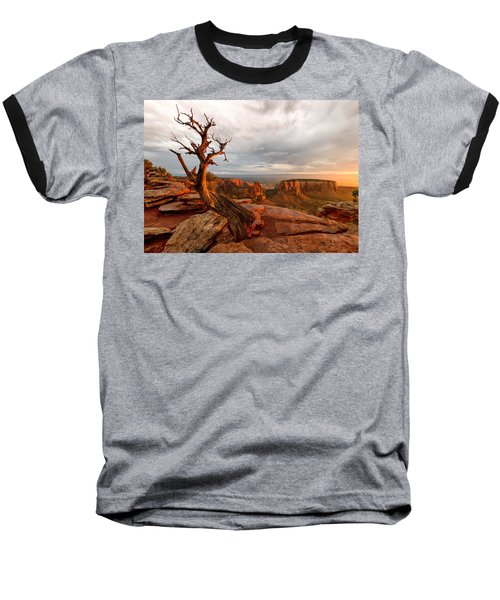 The Light On The Crooked Old Tree Baseball T-Shirt by Ronda Kimbrow