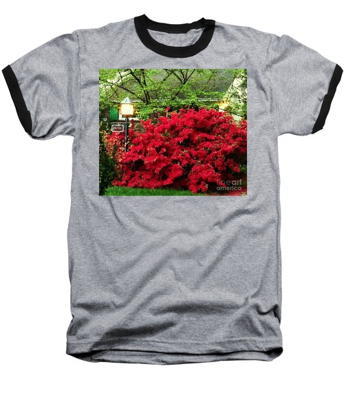 Baseball T-Shirt featuring the photograph The Light Red Bush Bella by Becky Lupe