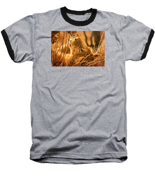 The Lion Muse Baseball T-Shirt by Michael Cinnamond