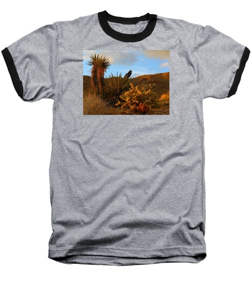 The Living Desert In Winter Baseball T-Shirt