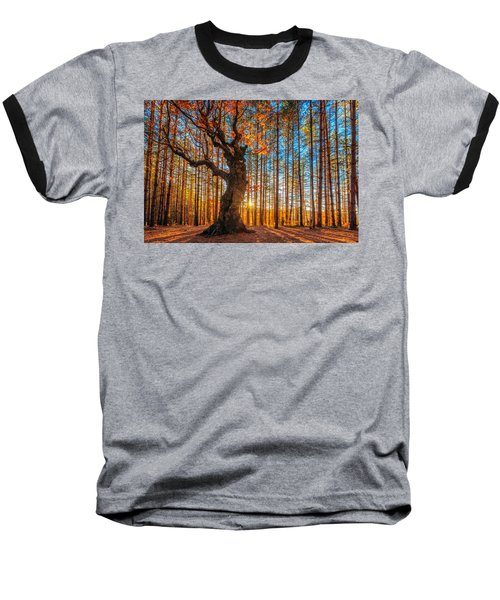 The Lord Of The Trees Baseball T-Shirt