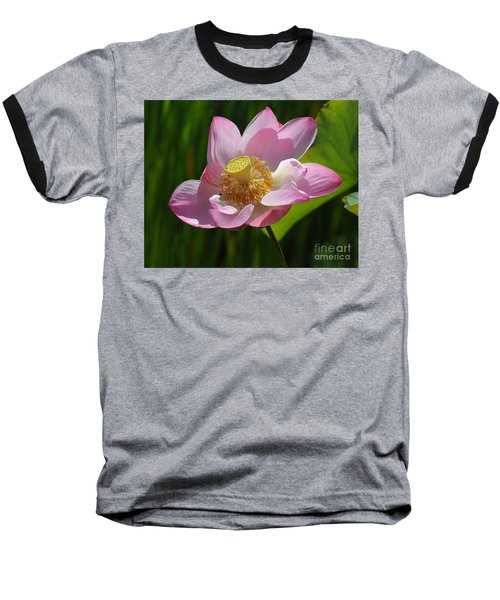 The Lotus Baseball T-Shirt by Vivian Christopher