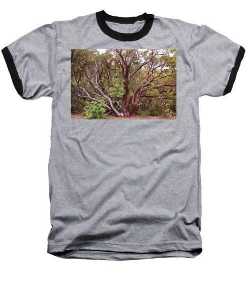 The Manzanita Tree Baseball T-Shirt