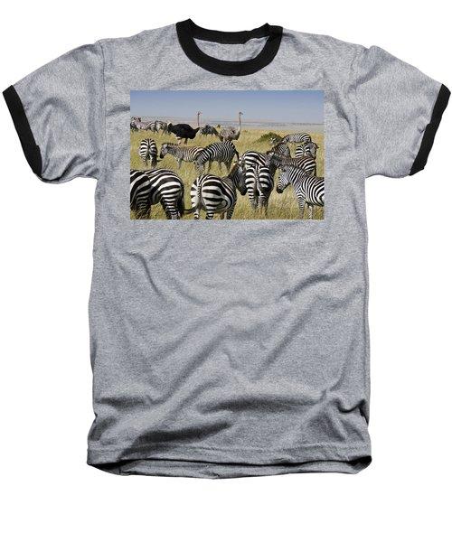 The Odd Couple Baseball T-Shirt by Michele Burgess