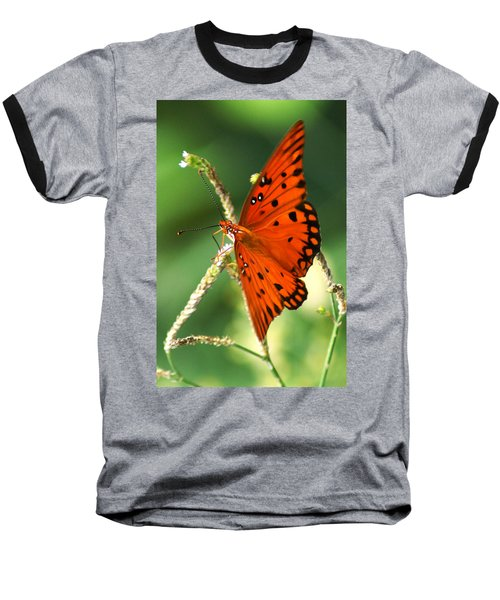The Passion Butterfly Baseball T-Shirt