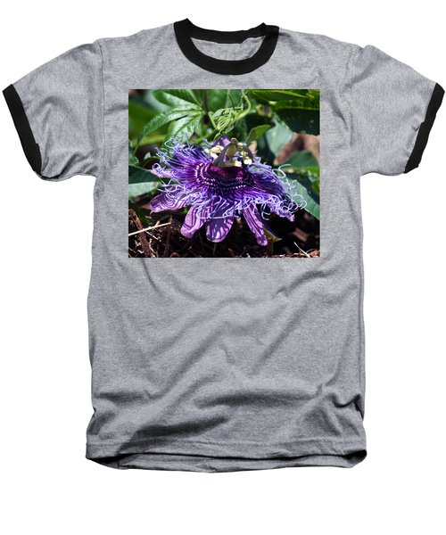 The Passion Flower Baseball T-Shirt by Kim Pate