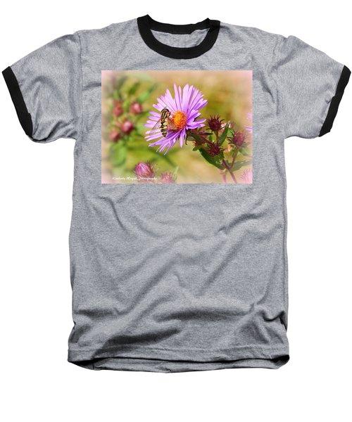 The Pollinator Baseball T-Shirt