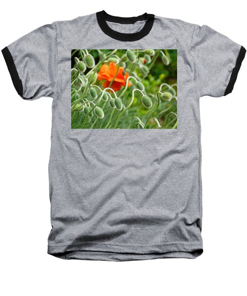 Baseball T-Shirt featuring the photograph The Poppy by Evelyn Tambour