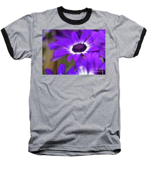 The Purple Daisy Baseball T-Shirt