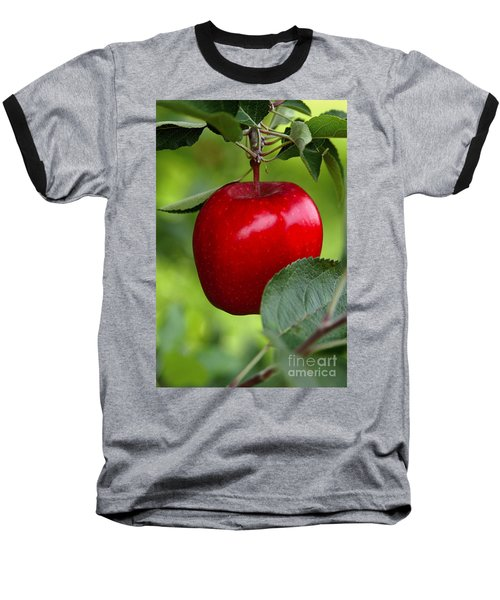 The Red Apple Baseball T-Shirt