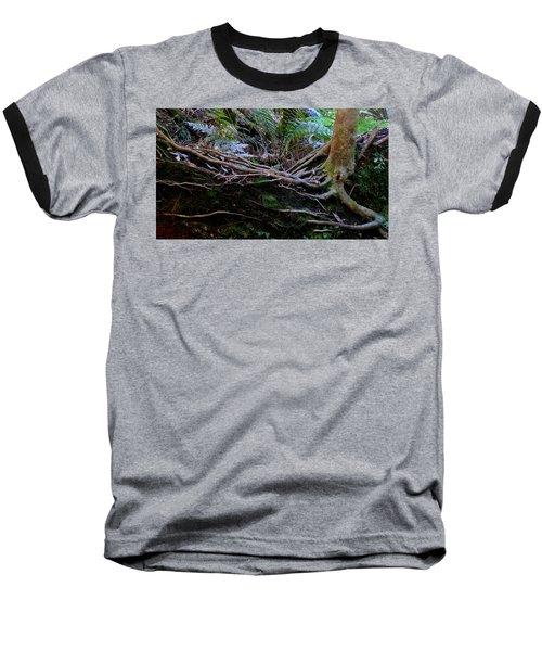 The Salamander Tree Baseball T-Shirt by Evelyn Tambour
