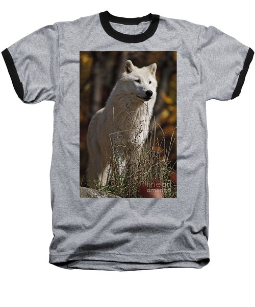 Baseball T-Shirt featuring the photograph The Sentinel by Wolves Only