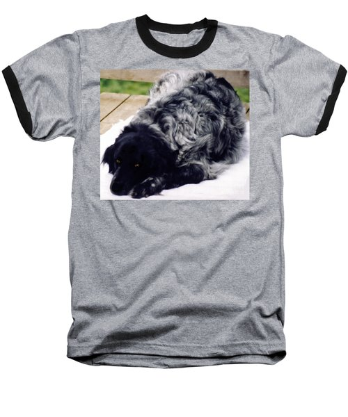 The Shaggy Dog Named Shaddy Baseball T-Shirt