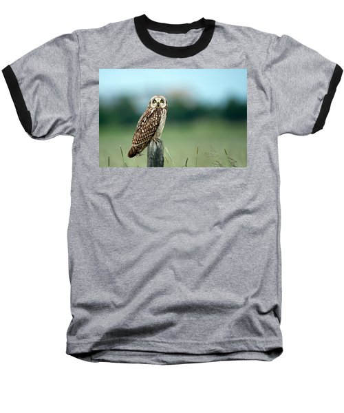 The Short-eared Owl  Baseball T-Shirt