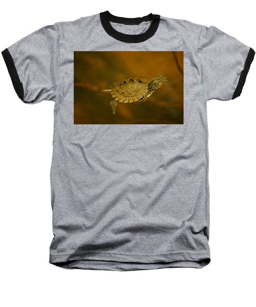 The Southeastern Map Turtle Baseball T-Shirt by Kim Pate