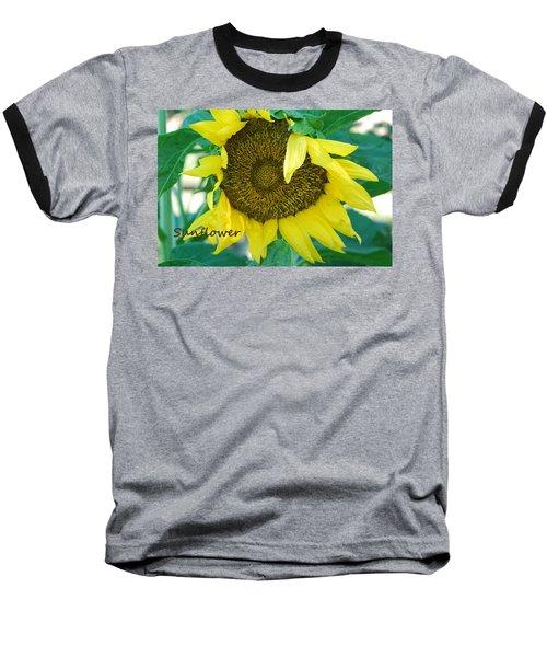 Sunflower Garden Baseball T-Shirt by Lisa  DiFruscio