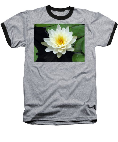 Baseball T-Shirt featuring the photograph The Water Lilies Collection - 02 by Pamela Critchlow