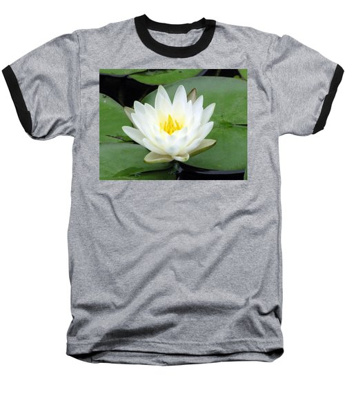Baseball T-Shirt featuring the photograph The Water Lilies Collection - 04 by Pamela Critchlow