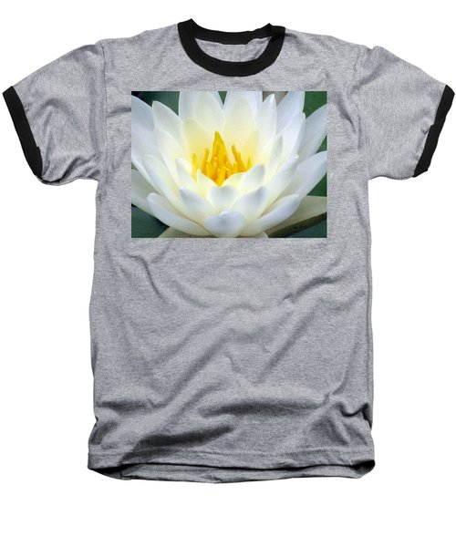 Baseball T-Shirt featuring the photograph The Water Lilies Collection - 05 by Pamela Critchlow