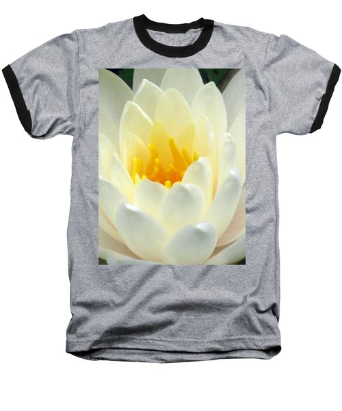 Baseball T-Shirt featuring the photograph The Water Lilies Collection - 10 by Pamela Critchlow