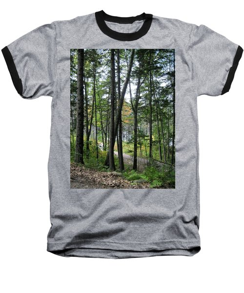 The Woods Coastal Maine Botanical Gardens Baseball T-Shirt by Patricia E Sundik