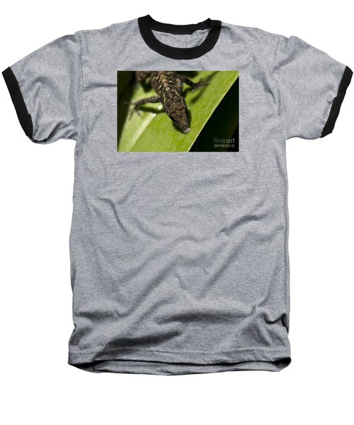 Baseball T-Shirt featuring the photograph Thirsty Brown Anole by Meg Rousher