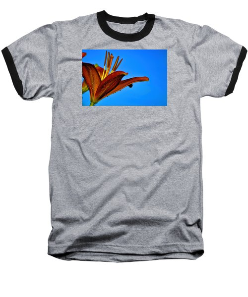 Thirsty Lily In Hdr Art Baseball T-Shirt by Lesa Fine