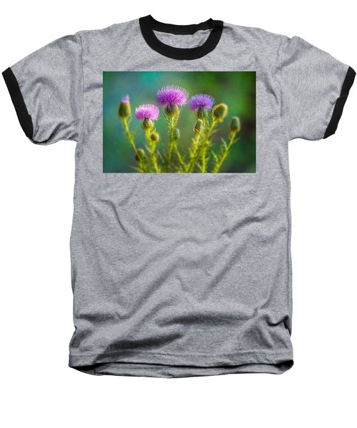 Thistle In The Sun Baseball T-Shirt