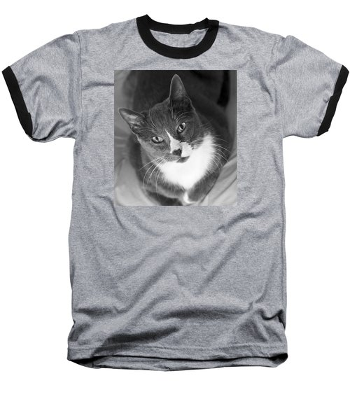 Devotion - Cat Eyes Baseball T-Shirt by Jane Eleanor Nicholas