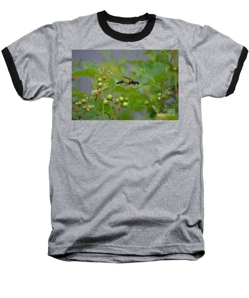 Baseball T-Shirt featuring the photograph Thread-waist Wasp by James Petersen
