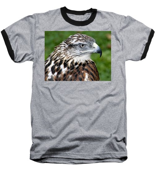 The Threat Of A Predator Hawk Baseball T-Shirt