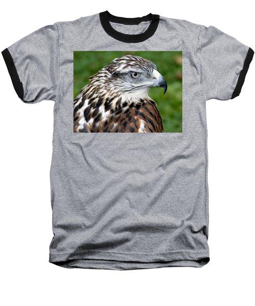 The Threat Of A Predator Hawk Baseball T-Shirt