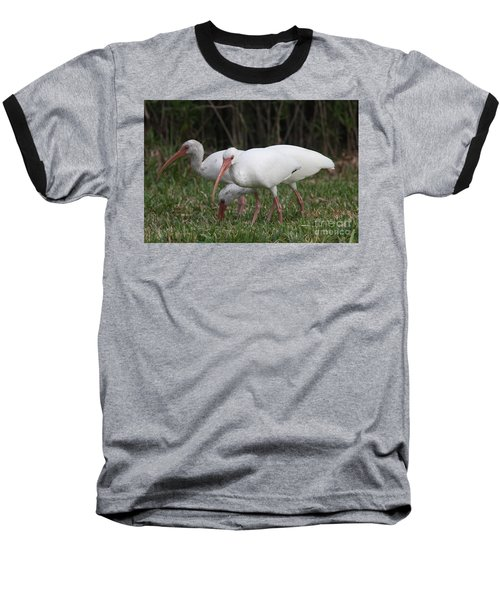 Baseball T-Shirt featuring the photograph Three Ibis Together by Christiane Schulze Art And Photography
