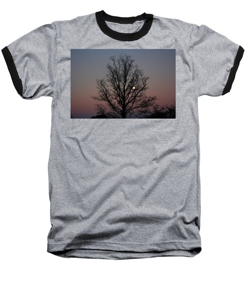 Through The Boughs Landscape Baseball T-Shirt by Dan Stone