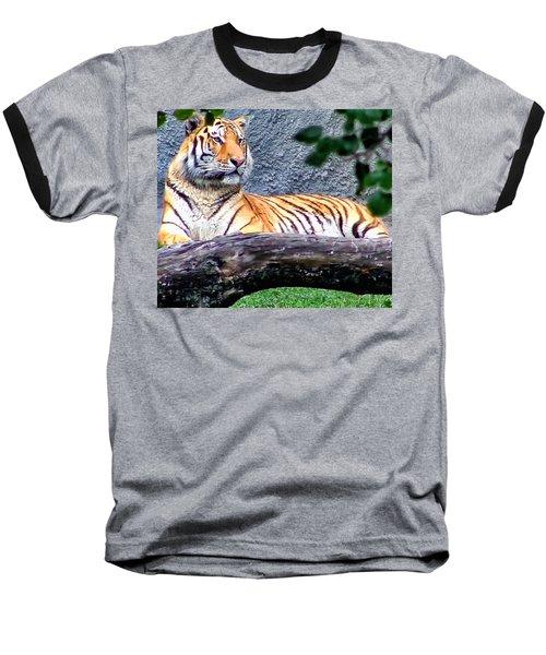 Baseball T-Shirt featuring the photograph Tiger 1 by Dawn Eshelman