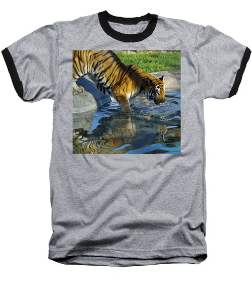Tiger 1 Baseball T-Shirt