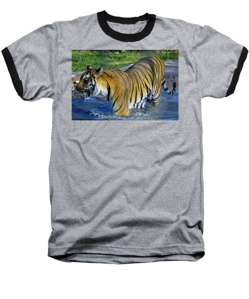 Tiger 4 Baseball T-Shirt