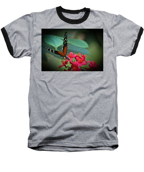 Tiger Longwing Butterfly Baseball T-Shirt by Joann Copeland-Paul