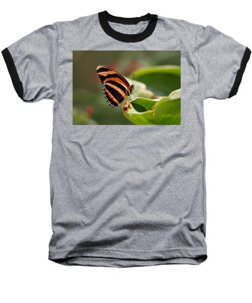 Tiger Striped Butterfly Baseball T-Shirt