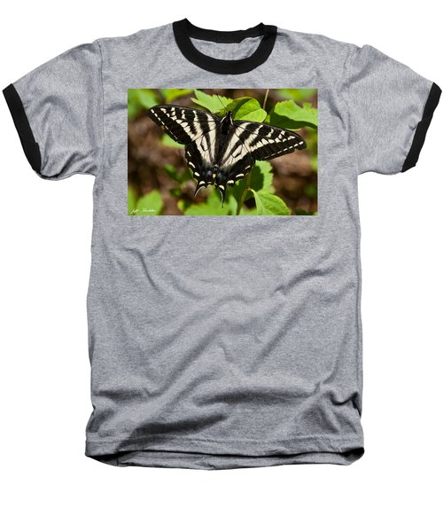 Baseball T-Shirt featuring the photograph Tiger Swallowtail Butterfly by Jeff Goulden