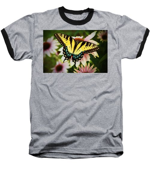 Tiger Swallowtail Butterfly Baseball T-Shirt by Michael Porchik
