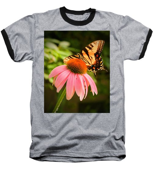 Tiger Swallowtail Feeding Baseball T-Shirt by Michael Porchik
