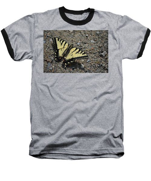 Baseball T-Shirt featuring the photograph Tiger Swallowtail by James Petersen