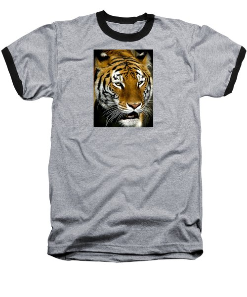 Tiger Tiger Burning Bright Baseball T-Shirt by Venetia Featherstone-Witty